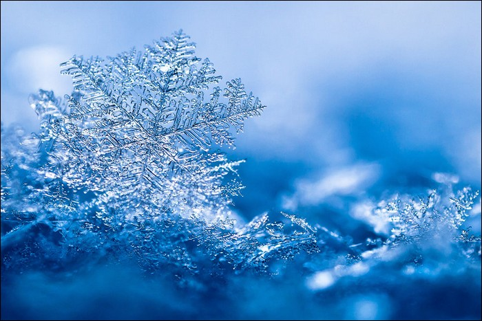 Shooting snowflakes: Winter photography