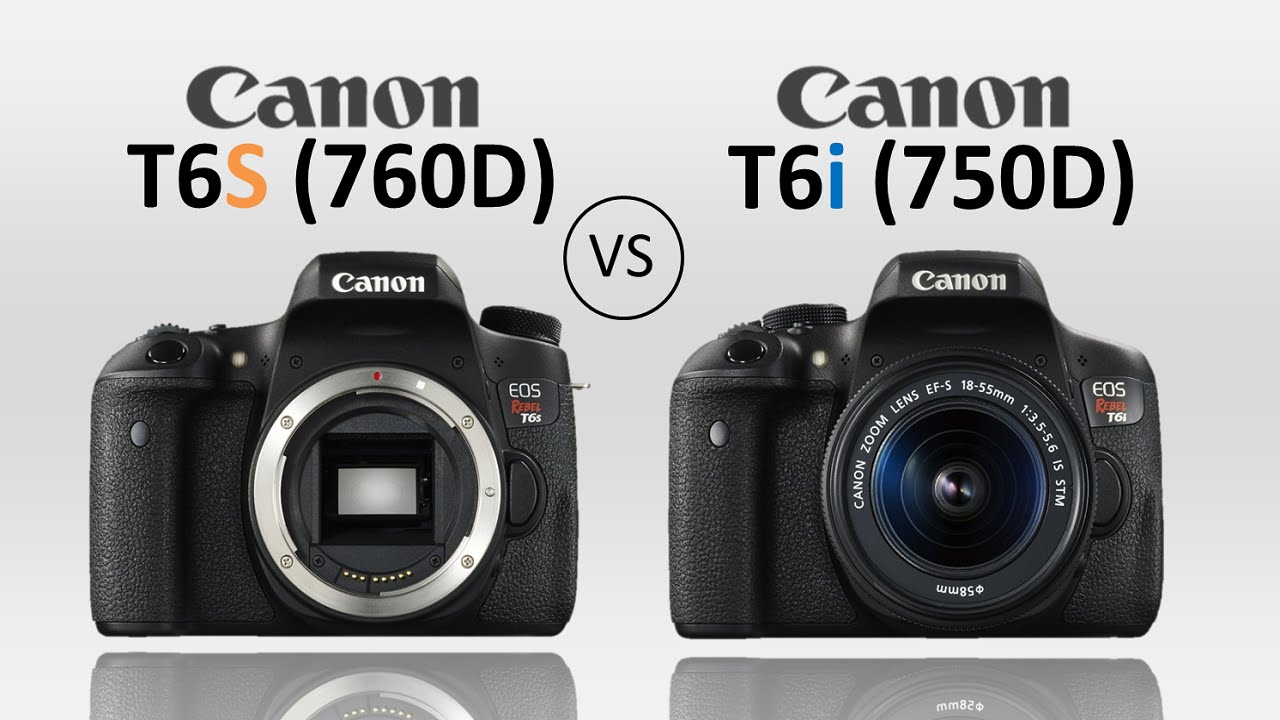 A comparison of Canon digital cameras: Rebel T6i vs. Rebel T6s