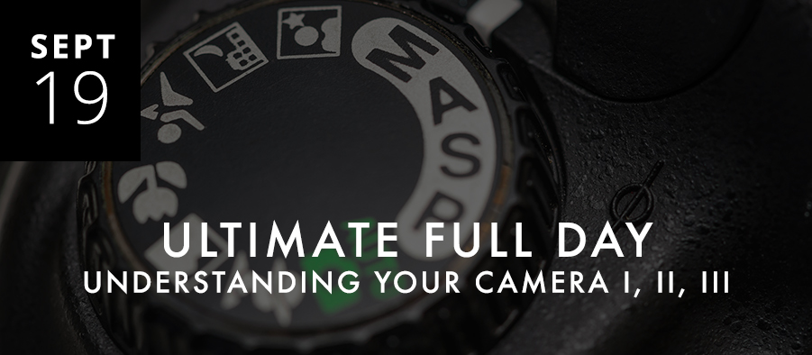 Ultimate Understanding Your Camera