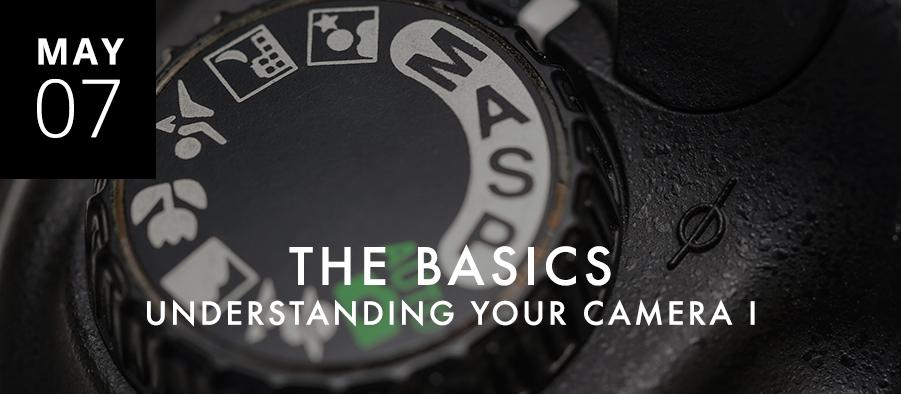 Understanding Your Camera I: The Basics
