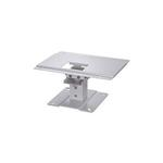 Canon Ceiling Mount RS-CL13