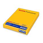 Kodak Professional EKTACHROME E100 Film (4 x 5in, 10 Sheets)