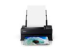 Epson Surecolor P900 17-Inch Standard Edition Printer