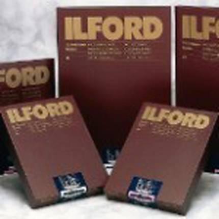 Ilford Multigrade 20X24 RC Warmtone Pearl (10 Sheets)