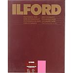 Ilford Multigrade FB Warmtone Paper (Glossy, 42x32ft Roll)