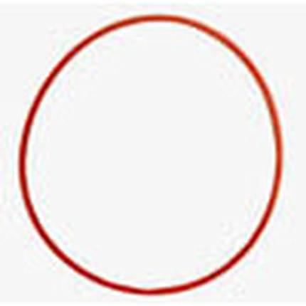 Olympus O ring (POL-E03 A and B)