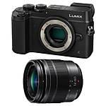 Panasonic Lumix GX8 Mirrorless Micro 4/3 Body and 12-60mm f/3.5-5.6 Lens