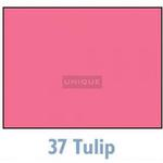 Savage Widetone Seamless Background Paper - 107in.x50yds. - #37 Tulip