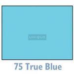 Savage Widetone Seamless Background Paper - 107in.x50yds. - #75 True Blue