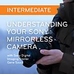Understanding Your Sony Mirrorless Camera: Intermediate (Sony)
