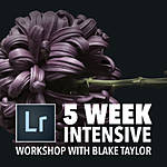 Intro to Lightroom Intensive with Blake Taylor (5 Weeks)