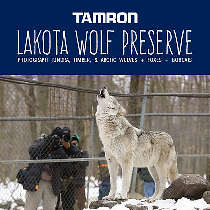 Lakota Wolf Preserve Workshop with Tamron